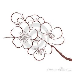 sakura outline drawing - Google Search
