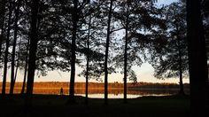 https://flic.kr/p/DtmoMk | Woman Admires Färsjön Colours | A beautiful autumn afternoon on the shores of the Färsjön.