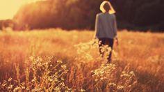 Başak Tarlası.  Walk in a field of spike.