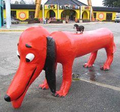 Wiener meet wiener