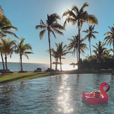 The makeover your pool has been waiting for. Let the little one in on the fun with the Rose Gold Flamingo Baby Float. Flamingo Float, Soft Legs, Baby Float, Sunnylife, Paradise Found, Enjoy Summer, Rest Of The World, Cool Pools, Holiday Destinations