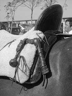 saddle of the Vaquero of Spain