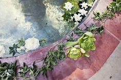 Floral Design: The Velvet Garden - http://www.stylemepretty.com/portfolio/the-velvet-garden Event Design: Amy Kaneko Events - http://www.stylemepretty.com/portfolio/amy-kaneko-events Photography: Joy Marie Photography - http://www.stylemepretty.com/portfolio/joy-marie-photography   Read More on SMP: http://www.stylemepretty.com/2012/03/27/palm-springs-wedding-by-amy-kaneko-events/