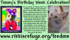 Timmy's Birthday Message! (Timmy is asking for your help to make his birthday wish come true!) Read more here: http://rikkisrefuge.org/?p=13747