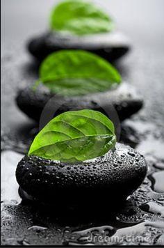 #Sand #stone #leaf