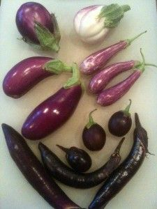 It's not too late to grow these unusual eggplants in your garden this summer. Don't miss the tomato suggestions too!