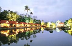 Top 3 Sightseeing Spots You Must Visit in Kerala - India By Driver and Car