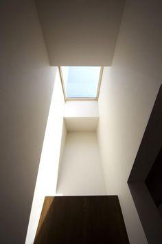 Skylight // Light