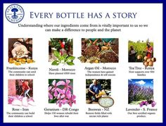 Do you know what's in your bottle? I know what's in all of mine! Contact me to find out Argan Oil Morocco, Neals Yard Remedies, Organic Lifestyle, Love Your Skin, Organic Beauty, Tea Tree, Natural Skin Care, How To Find Out, How To Look Better