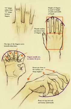 Tips for hands