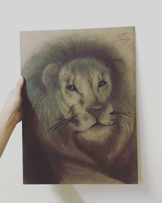lion with pencil : realistic drawing by me