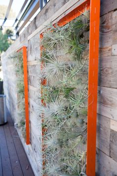 #ecospace #plants #patio #ecoATM