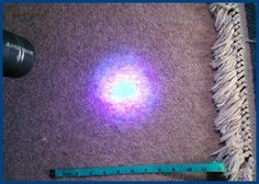 This is how an 'invisible' pet urine stain on my carpet looked when I shone a UV Black Light on it! Read more here!