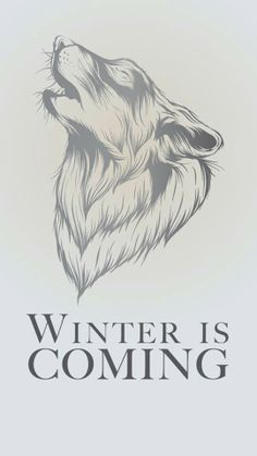 Obligitory winter is coming pin