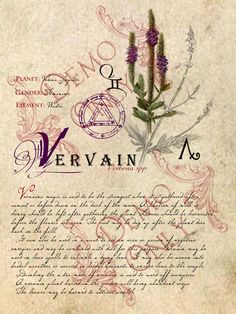 BOS ~ Vervain page
