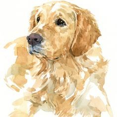 1000+ ideas about Golden Retriever Art on Pinterest | Dog Art, Pet ...