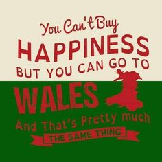 Yep - moving from England to Wales was the best decision ever. New Quotes, Quotes To Live By, True Quotes, Wales Language, Welsh Words, Welsh Sayings, Wales Rugby, Celtic Nations, Visit Wales