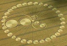 crop circles - Cerca con Google
