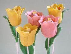 Tullip cakepops / Tulipanes