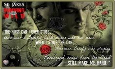 Running Wild by SE Jakes ~ Virtual Blog Tour with Review, Guest Post & Giveaway - See more at: http://sinfullysexybooks.blogspot.de/2014/07/running-wild-by-se-jakes-virtual-blog.html#sthash.KBTKKfkr.dpuf