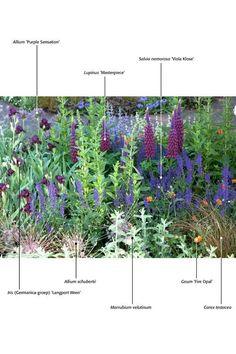 Afbeeldingsresultaat voor herbaceous border planting scheme
