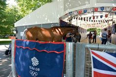 Olympic horses arrive at Greenwich Park for London 2012 - Horse & Hound