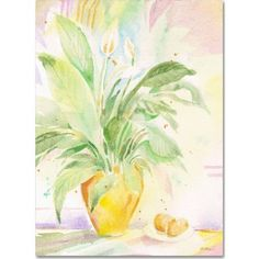 Trademark Fine Art The Peace Lily Canvas Art by Sheila Golden, Size: 18 x 24, Multicolor