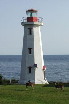 marruecos Доступ к нашему сайту намного больше информации Light Of Life, Light Of The World, Being In The World, Light House, Bass Harbor Lighthouse, Lighthouse Lighting, Portugal, Canadian History, Beacon Of Light