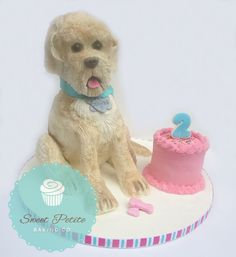 Sculpted Dog and Smash Cake- Chocolate/Chocolate