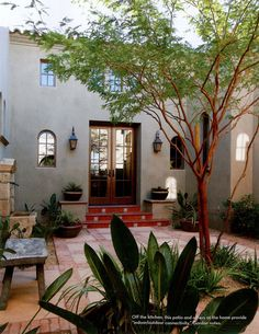 I have dreamed of having a home with a Courtyard like this where wildlife could gather in perfect peace.