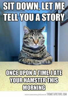 Lol  !!   What a way to tell a story   Fast and easy  Atte biez gaga!!