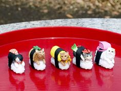 Sushi cats, available now in the Animal Cafes online store