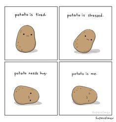- laugh out loud. Potato Meme, Potato Funny, Cute Potato, Tiny Potato, Cute Memes, Funny Cute, Really Funny, Cute Comics, Funny Comics