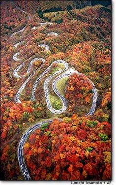 Arkansas Pig Trail in the fall... Arkansas Highway 23 is a north–south state highway in north Arkansas. The route runs 24.05 miles from US 71 near Elm Park north to the Missouri state line through Ozark and Eureka Springs