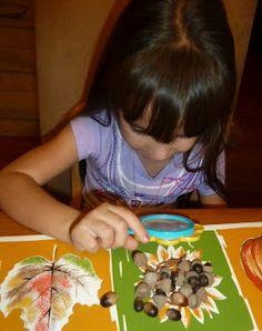 acorn math & explorations for preschoolers