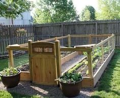 Lovely enclosed vegetable garden with raised beds.