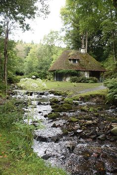 .How beautiful, like a scene from a Thomas Hardy novel.  How I would love to live here, hear the brook and walk along it and watch the kingfishers..
