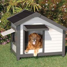 Dog House / Casa para perro