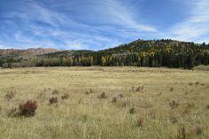 foothills porch view ranch horses - Recherche Google