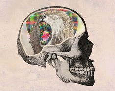 How does the brain generate consciousness? | 24 Big Questions Science Still Needs To Answer