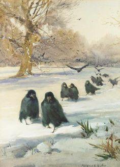 A Polar Bear's Tale: Mildred Anne Butler (1858-1941)