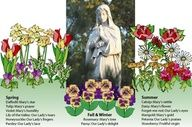 Marian plants for a year-round Mary Garden. links to other marian gardens around the world and the listing of their flowers names for Mary.