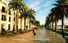 Tivat, Montenegro Tivat Montenegro, Street View, Europe, Places, Travel, Viajes, Destinations, Traveling, Trips