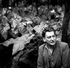 Roberto Burle Marx (1909-1994)