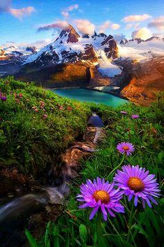 500 Best Beautiful Nature Images Beautiful Nature Nature Scenery