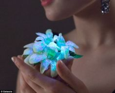 A Spray that makes flowers glow!   -Professor Mark Tester and a group of Australian scientists have created a special formula which can be used on plants and flowers, making them glow in the dark.  A simple spritz of Galassia Flowers can be sprayed onto foliage which is then placed next to a luminescent device, instantly making them flourescent.