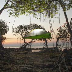 Das Baumzelt ermöglicht ein Camping-Vergnügen der besonderen Art: Schwereloses Zelten in den Lüften.