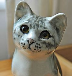 Cute Grey cat Winstanley Cat