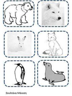 Δραστηριότητες, παιδαγωγικό και εποπτικό υλικό για το Νηπιαγωγείο: Τα Πολικά Ζώα στο Νηπιαγωγείο: Φύλλο Εργασίας για την Γλώσσα