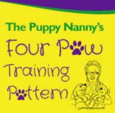 How to Have Your Dream Dog...learn How to turn your peeing, pooping, fur ball of destruction into Your Dream Dog.